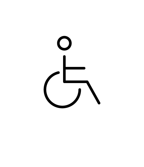 Persons with disabilities and reduced mobility